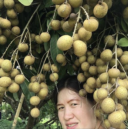 Siriluk Wong